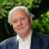 Thumbnail image for F*cking Hypno-squids, Sir David Attenborough confirms