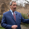 Thumbnail image for If an EU passport is so important you should have chosen to have Nigel Farage as your Dad, Remoaners told